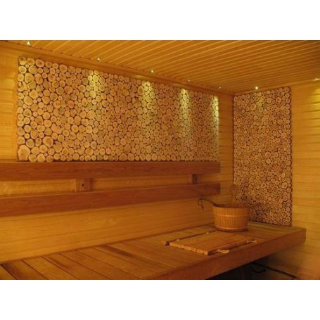 Lighting Sauna lighting LedLite 6 180 ° C (6 diodes) Silver